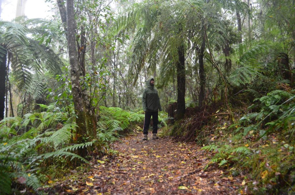 Lorne Australie Great Ocean Road